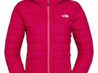 The North Face Women's Mistassini Hoodie