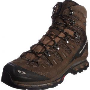 Salomon Men's Quest 4D Gtx Walking Boot